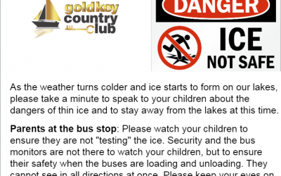 Thin Ice Warning